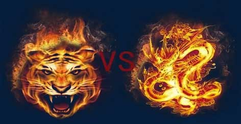 Online Dragon – Tiger Tips: Top 5 Effective Tips You Cannot Miss