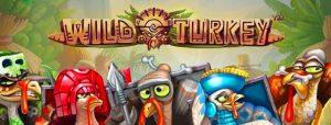 How To Play Wild Turkey Slot Machine At Live22 Singapore