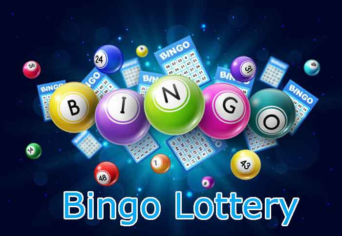 How To Play Bingo Lottery At Online Bookmaker